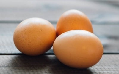 Как правилно да съхраняваме яйцата